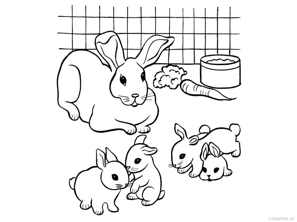 Pin Von Kateriny Auf Bunny Rabbit Coloring Ausmalbilder Kostenlose Ausmalbilder Kinderfarben