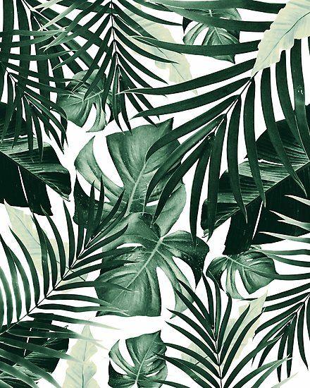 Tropical Jungle Leaves Pattern #4 #tropical #decor #art Photographic Print
