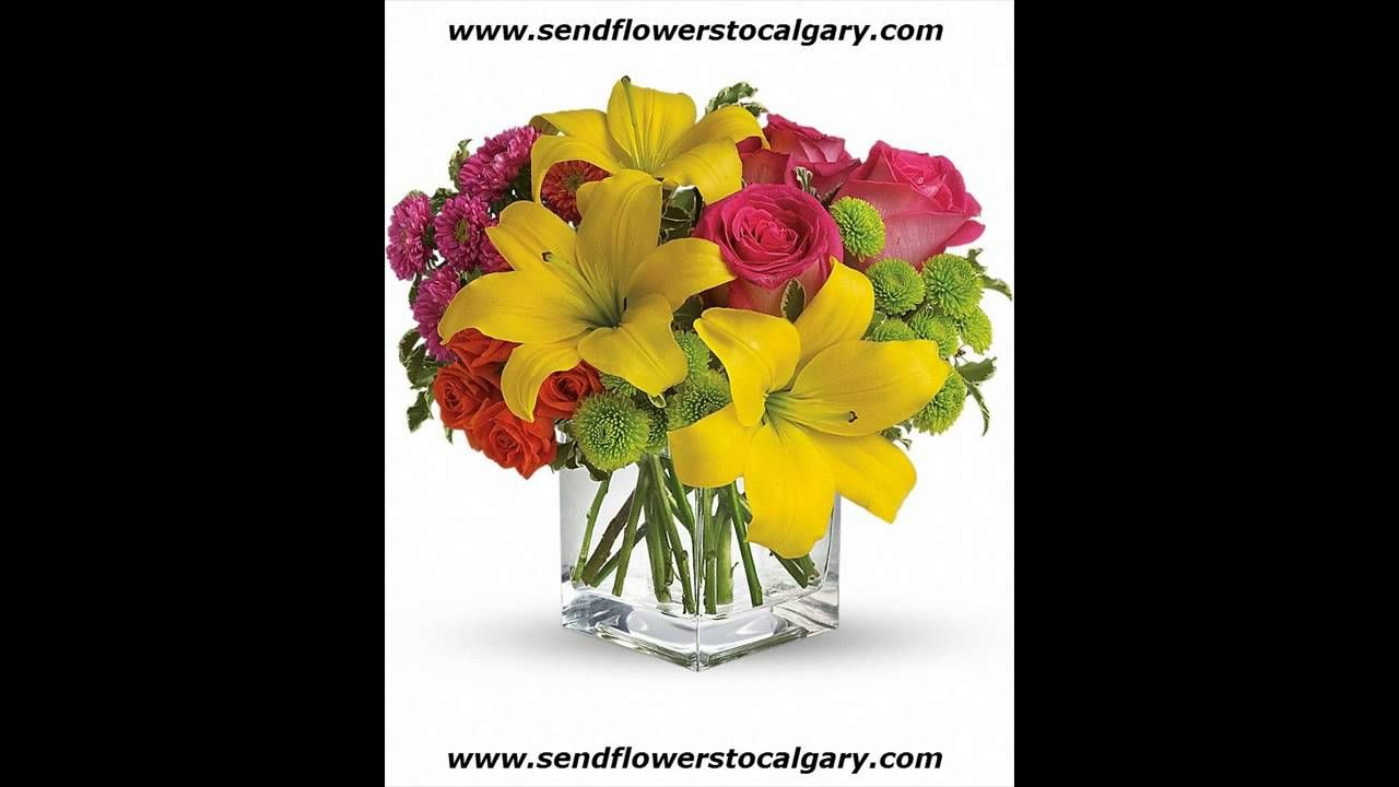 Canada Flowers Free Delivery Httpscalgaryflowersdelivery