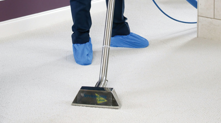 Top 5 Reasons Get Your Carpets Professionally Cleaned In Columbus Oh In 2020 How To Clean Carpet Professional Carpet Cleaning Pet Stains