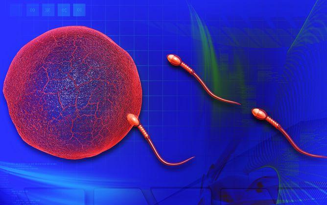 Are Plastics Making Men Infertile? -  http://bit.ly/1FFQkfh
