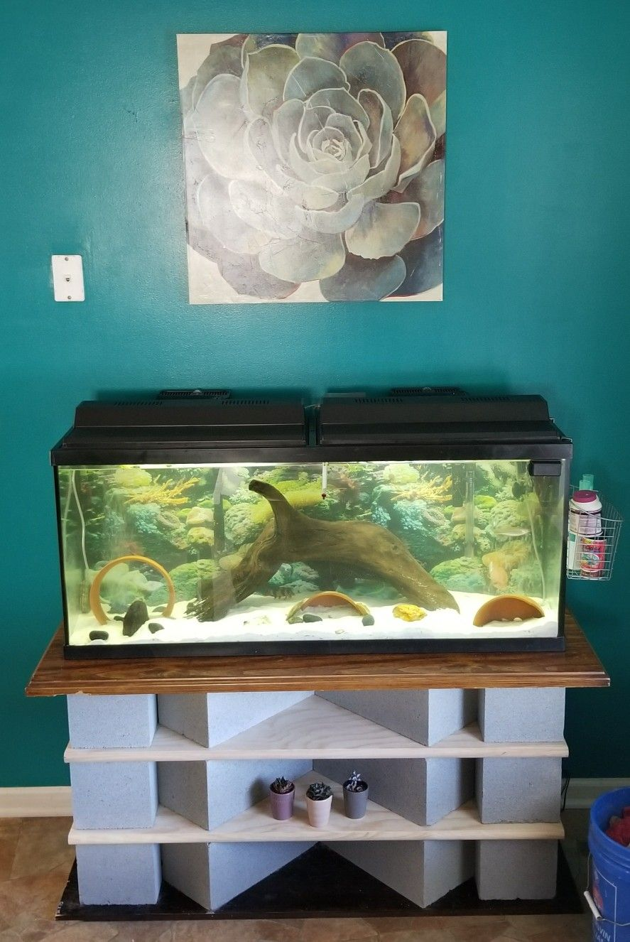 Diy Fish Tank Stand 55 Gallon Cinder Blocks And Wood Cost Me 65 Already Had A Table Top From An Old Fish Tank Stand Aquarium Stand 55 Gallon Aquarium Stand