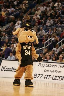 designer fashion 0b3e0 e89b4 Bryant University Bulldogs mascot, Tupper the Bulldog ...