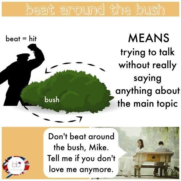 Expression Beat Around The Bush Learn English English Idioms English Vocab