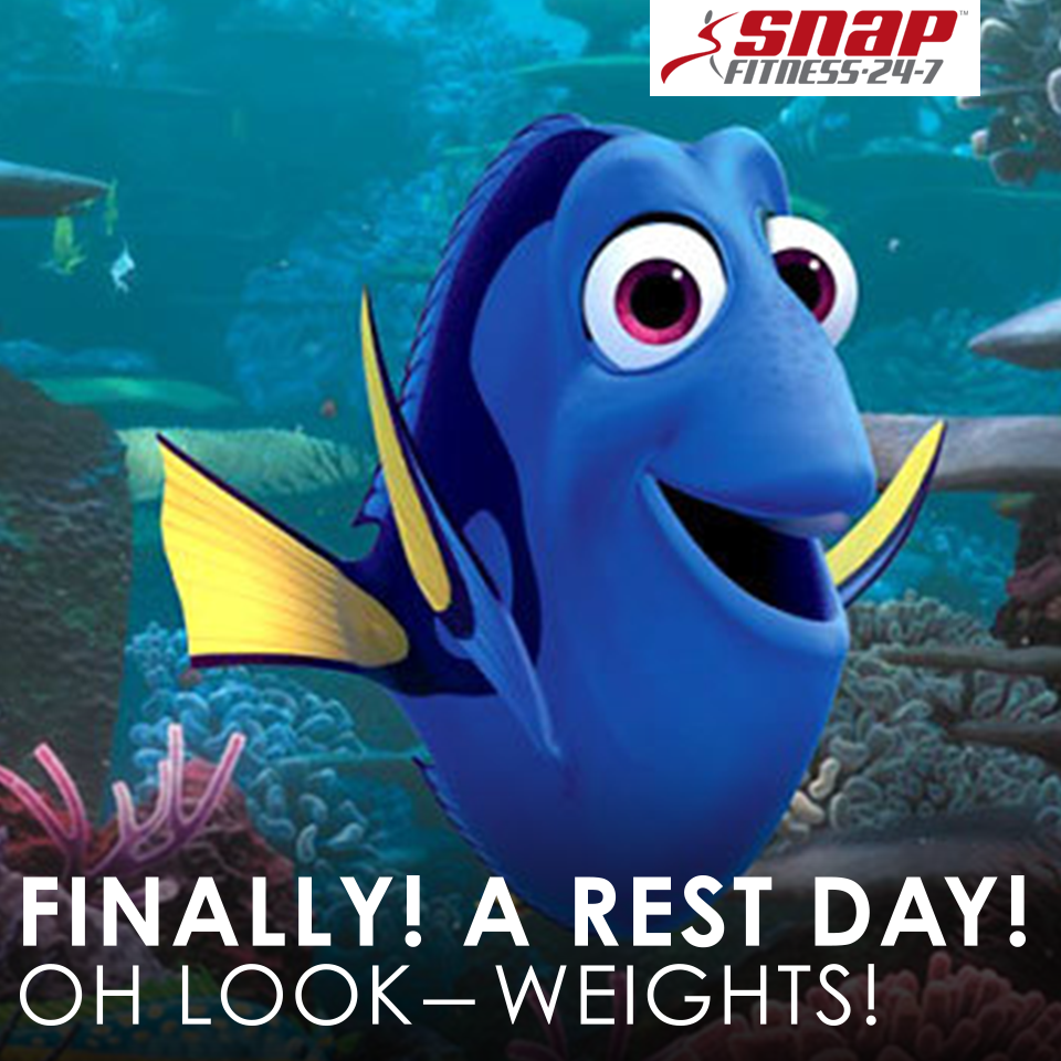 Dory Quotes Rest Day  Dreams Are Free Brah  Pinterest  Fitness Humor