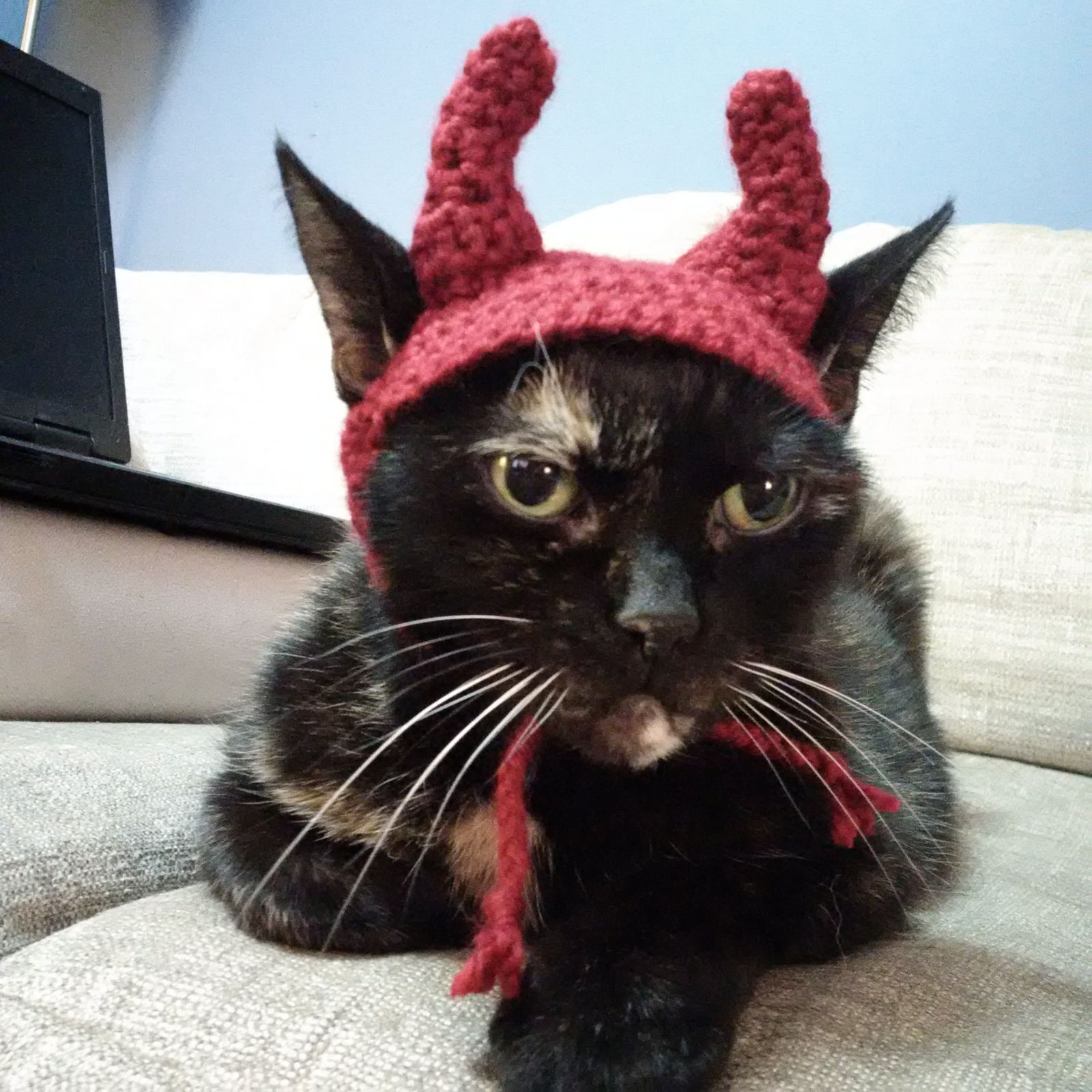 Ravelry: Devil-cat hat... Cat is saying \