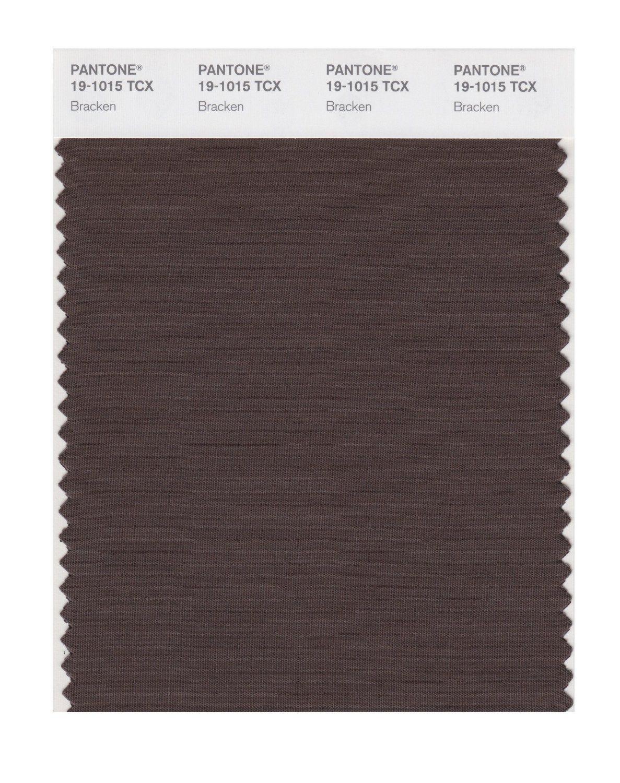 Buy Pantone Smart Swatch 19 1015 Bracken Pantone Brown Pantone Color Swatch