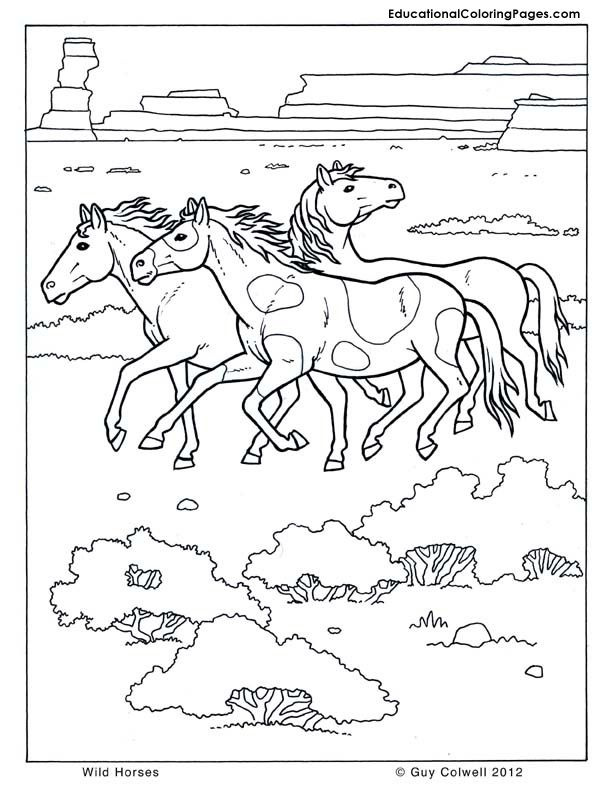 Horse Coloring Wild Horse Coloring Free Horse Printables