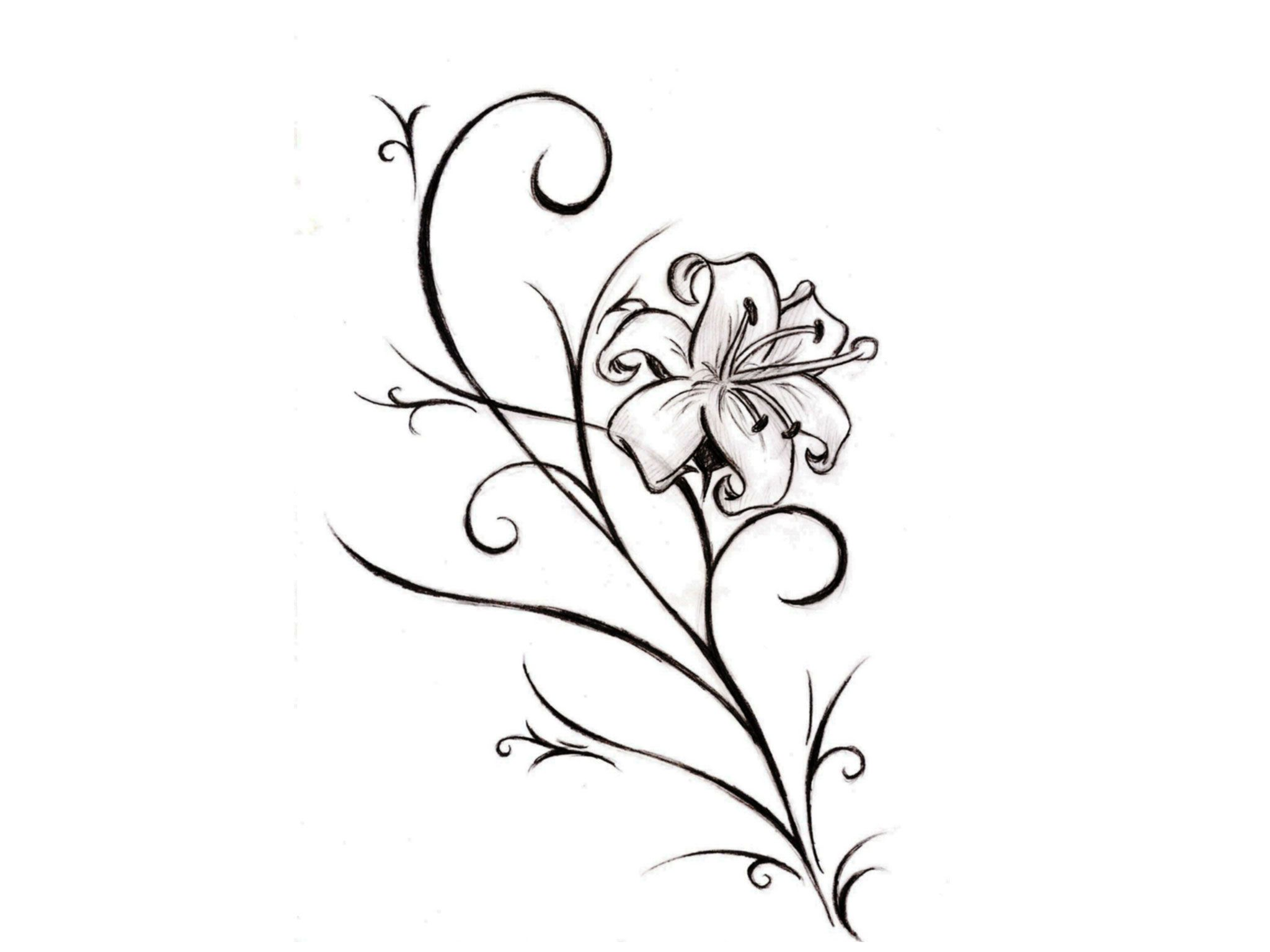 Free designs like a real lily flower tattoo wallpaper wallpaper free designs like a real lily flower tattoo wallpaper wallpaper izmirmasajfo