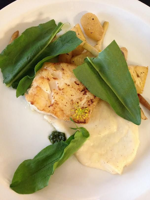 Roasted Cod, Salsify Two Ways, Artichokes, Honshimeji Mushroom & Sorrel #crushediceevents