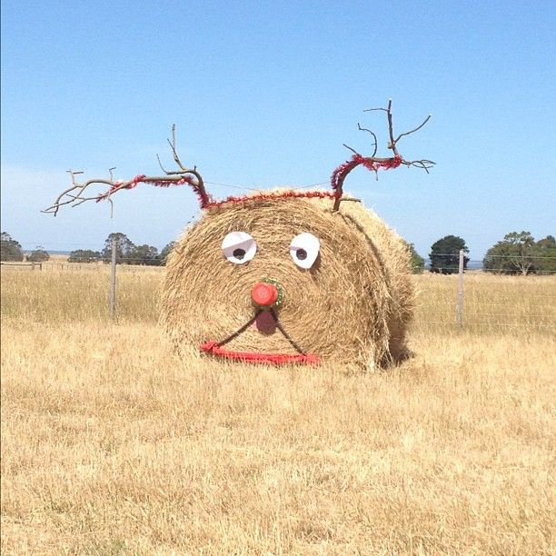 Farmer with a sense of humour. Mt Gambier. Tweeted by @katie_spain . Photo by spaink