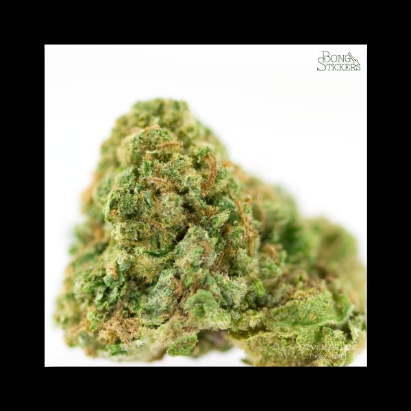 Dank Bud Weed Sticker - Marijuana Sticker 0129