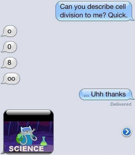 Cell division in a text message