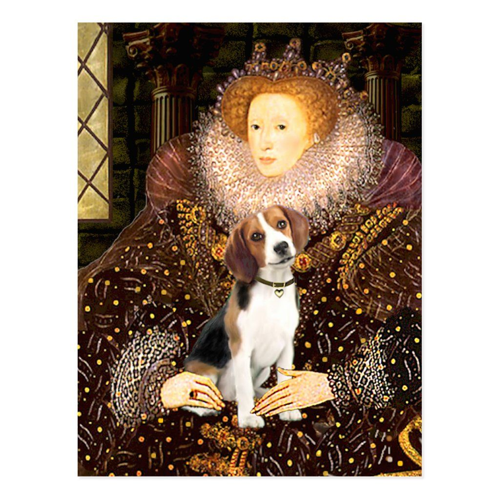 Beagle 1 Queen Elizabeth I Postcard Zazzle Com Beagle Dog Breeds Dog Love