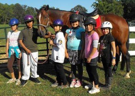 Northern Virginia Therapeutic Riding Program | Pediatric ...