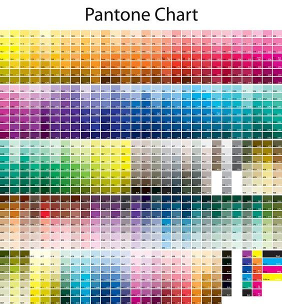 Pantone Color Swatch Book And Color Book And Color Chart Download