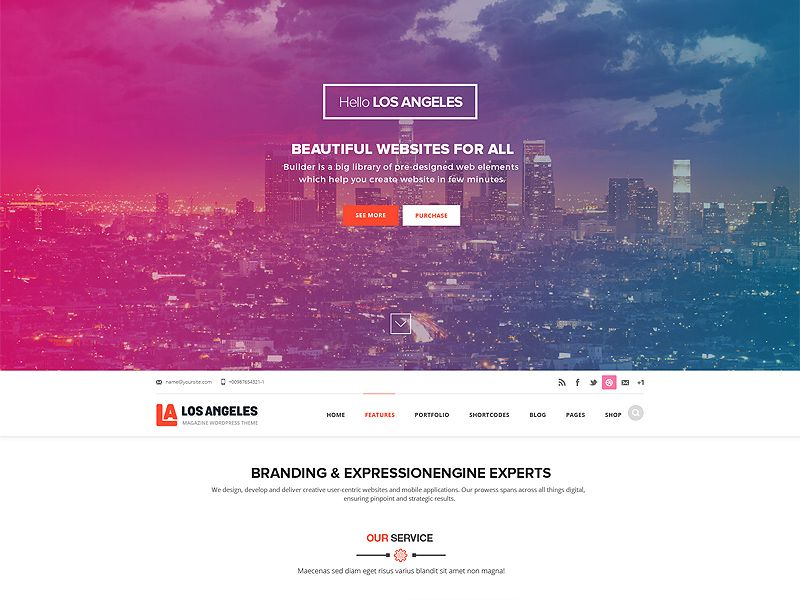 LOS ANGELES ONEPAGE