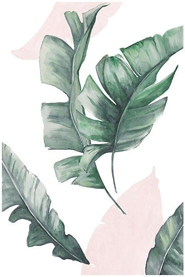 Palm leaves green and pink Poster