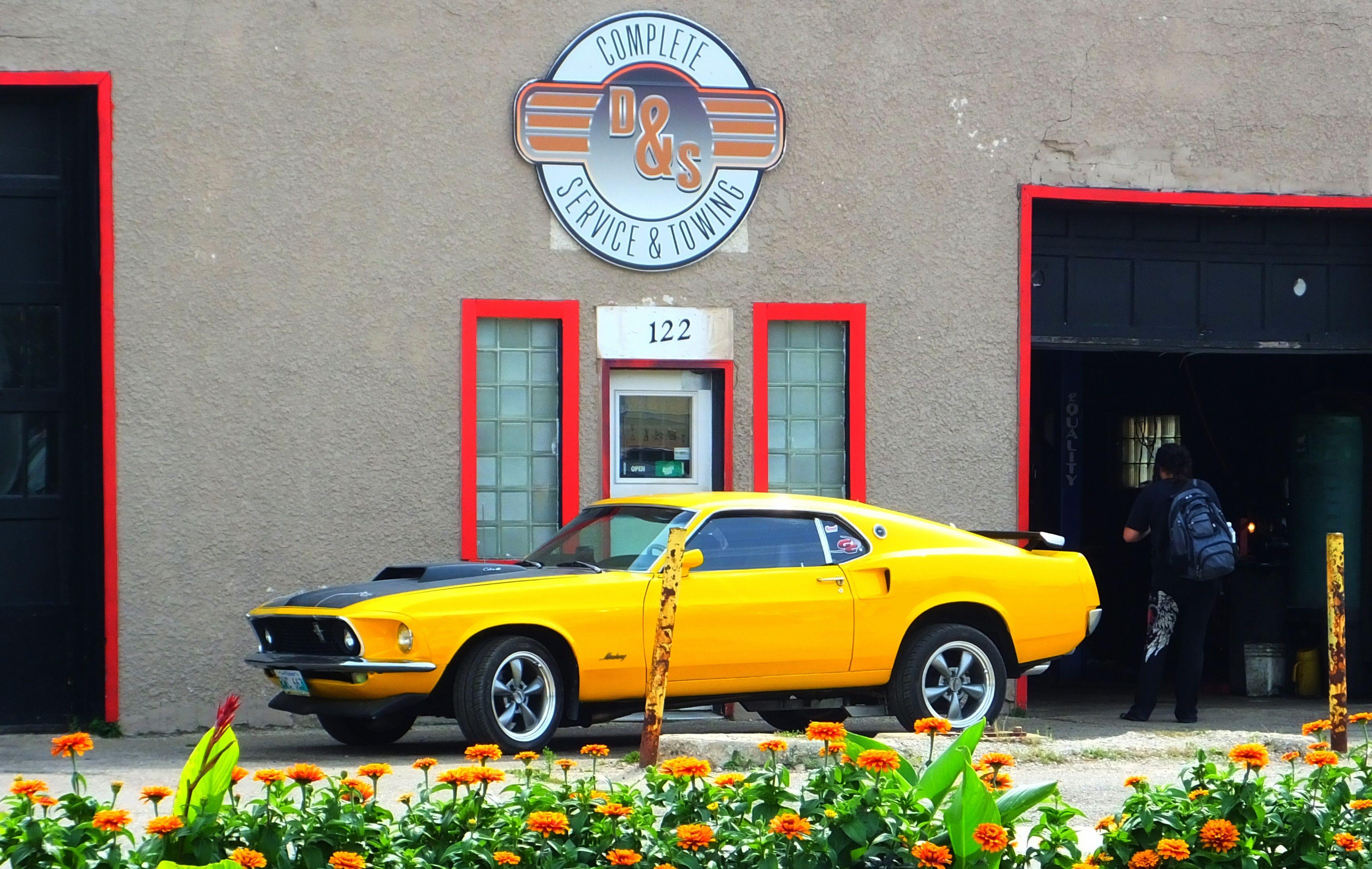 Yellow Cobra Jet #Yellow #CobraJet #Garage #Mustang #Fastback ...