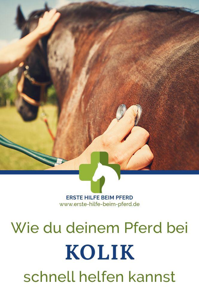 Wie du deinem Pferd bei Kolik schnell helfen kannst.