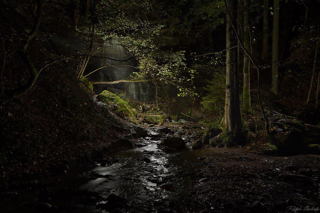 Murrhardt forest - Lightpainting - I (by Ralph Oechsle)