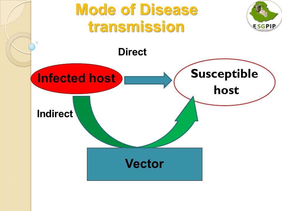 This image of the mode of disease transmission clearly ...