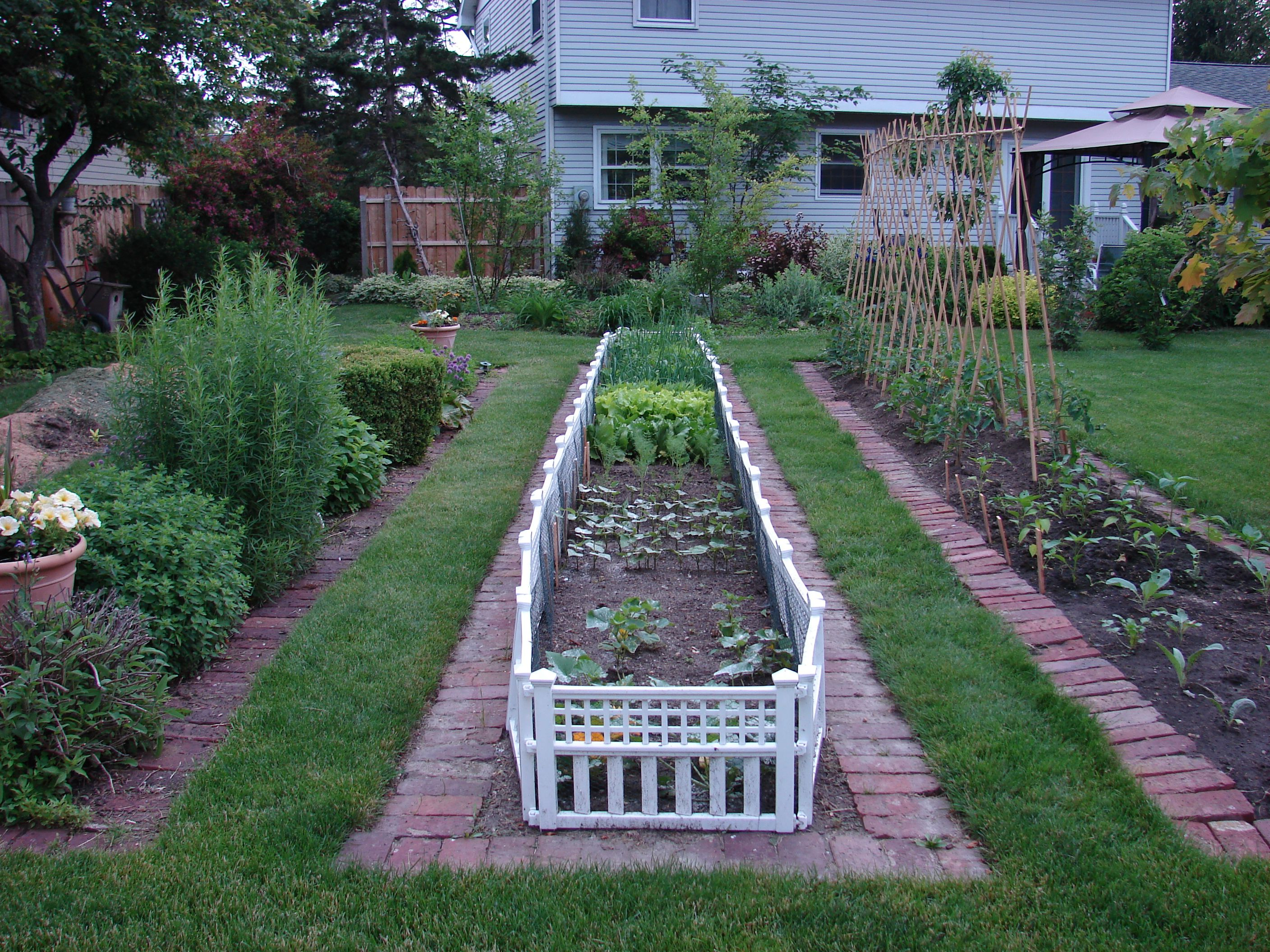 Vegetable and herb garden beds with old pavers and fencing
