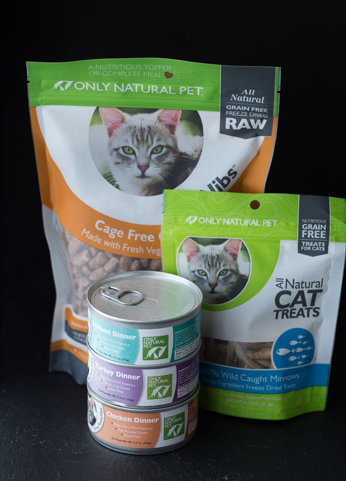 Choosing Healthier Pet Food Just Got Easier Healthy Pets