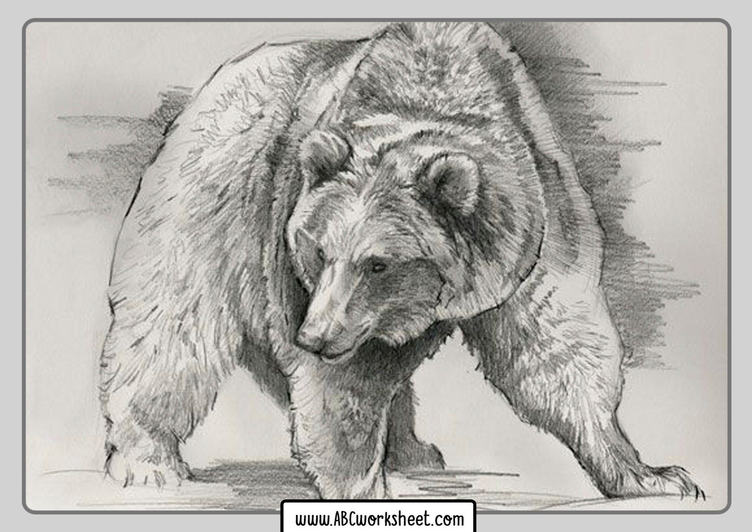 Grizzly Bears Coloring Pages In 2020 Bear Coloring Pages Grizzly Bear Bear Drawing