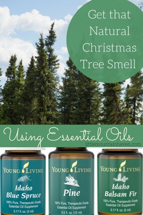 Family Food Garden Christmas Tree Essential Oil Blend Christmas Tree Smell Christmas Tree Essential Oil