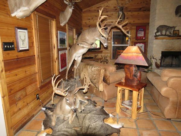 Hunting House Decor