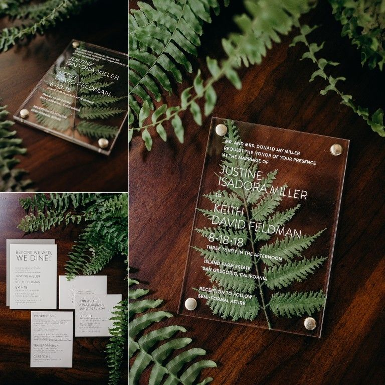 Modern Elegant Redwood Forest Wedding at The Island Farm, San Gregorio / Justine and Keith