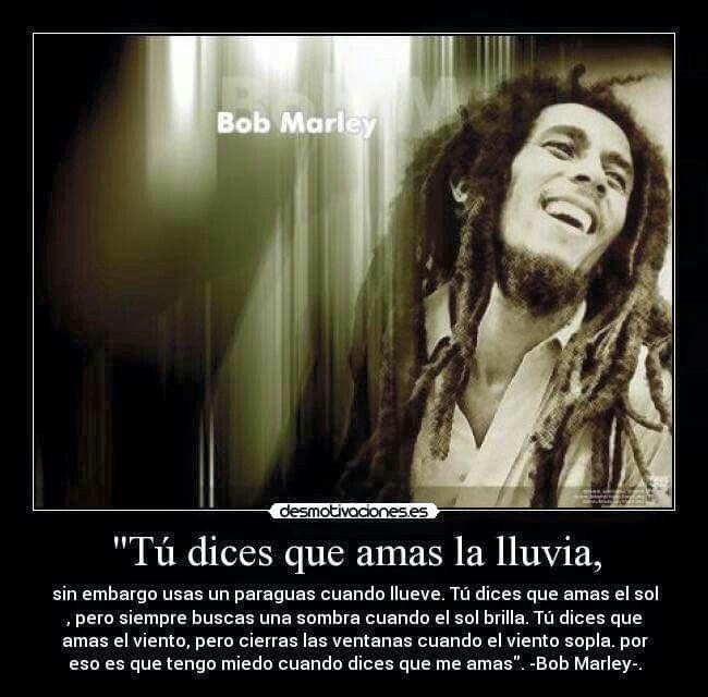 Pin De Shamila En Trues Amar La Lluvia Bob Marley Sombra