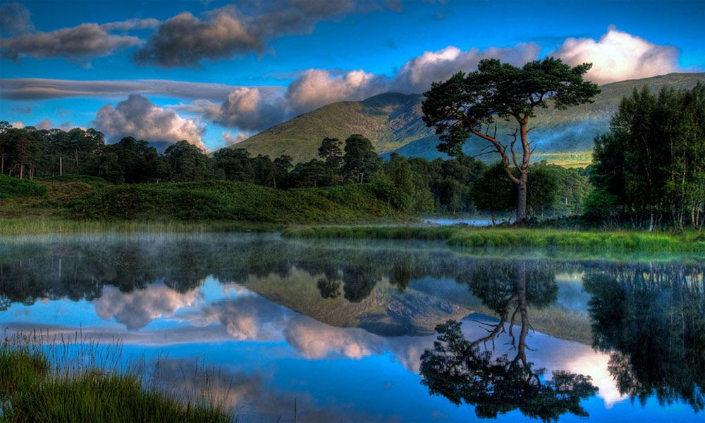 Reflections by David Mould  Beautiful Color
