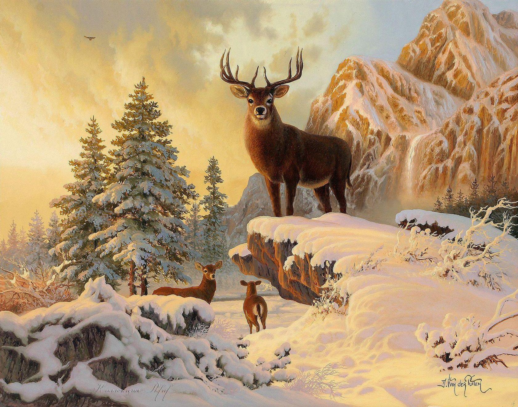 всей картинка с зимним пейзажем с одним домиком и оленями виде