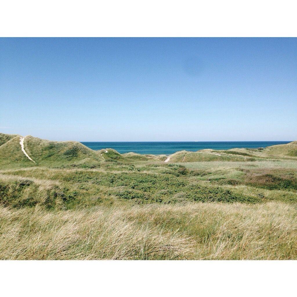 Hagen & havet | Maja Hattvang