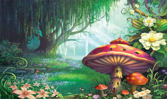 10++ Fungal forest info