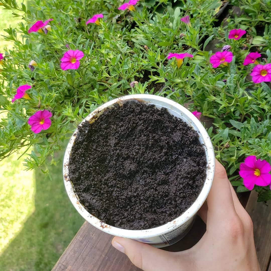 10 Super Simple Ways To Use Coffee Grounds In The Garden ...