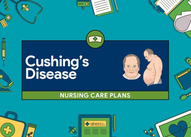 6 Cushing\u0027s Disease Nursing Care Plan Nursing Pinterest - care plan