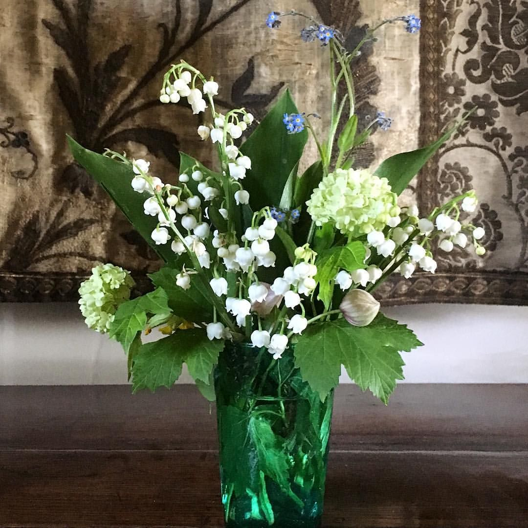 The first bunch of Lily of the Valley from our garden was
