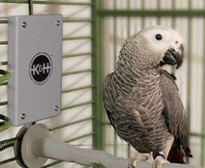 Snuggle Up Cage Warmer -  Safely keep you stressed, ill or chilly bird warm.