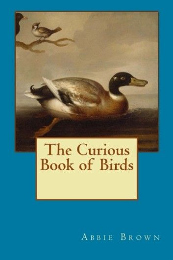 Curious Book of Birds ebook by Abbie Farwell Brown – Rakuten Kobo