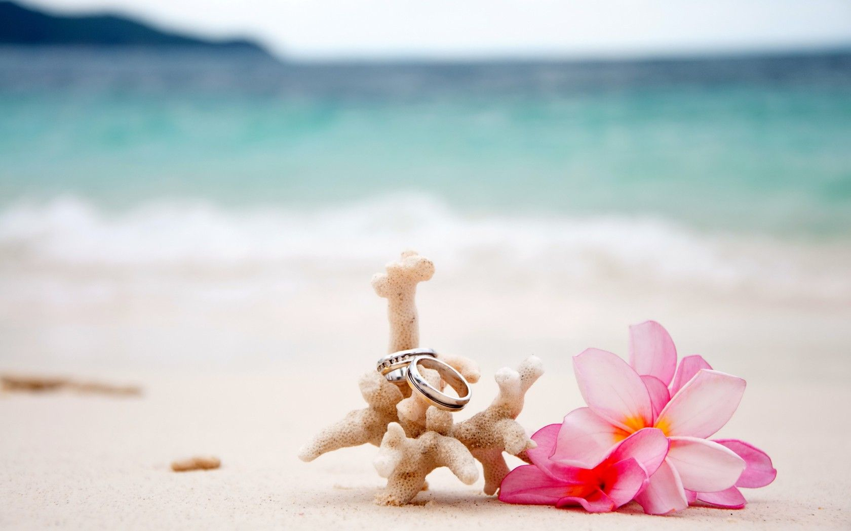beach wedding rings Wedding Ideas