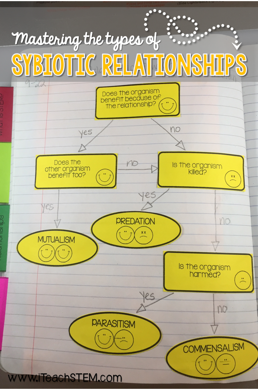 Stem ecosystem relationships symbiosis interactive notebook inb 5 student activities and templates that are perfect to add to students interactive notebooks geenschuldenfo Image collections