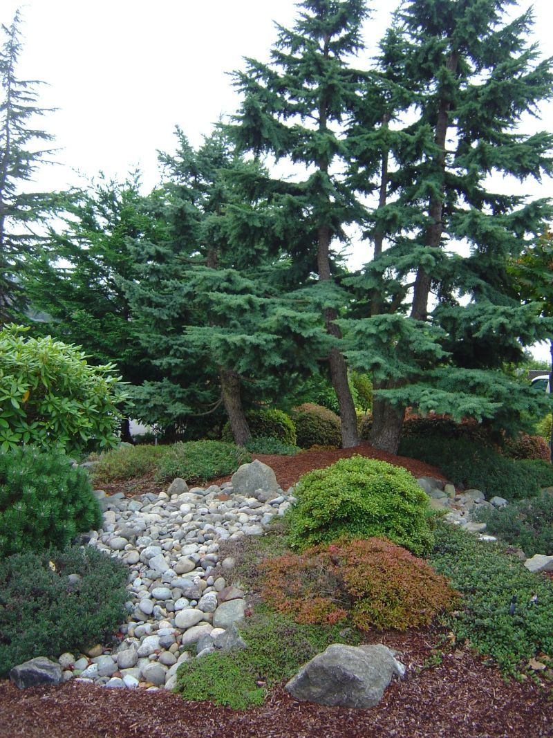 Pictures Of Pnw Gardens Pacific Northwest Landscaping Ideas