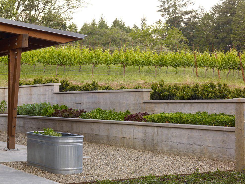 Stepped Concrete Wall Concrete Planters Concrete Wall Landscape Design