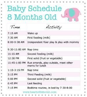 Sample feeding and sleeping baby schedule for 8 month old baby sample feeding and sleeping baby schedule for 8 month old baby parenting tips for moms forumfinder Image collections