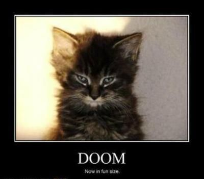 Doom Now In Fun Size Funny Baby Pictures Funny Animal Memes Cats