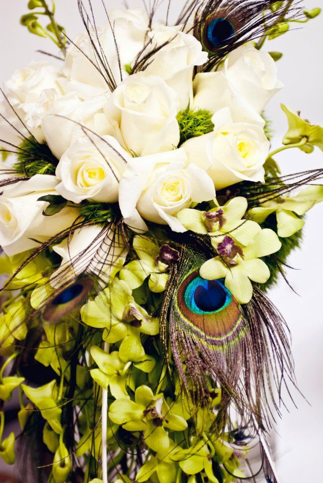 peacock feathers and roses