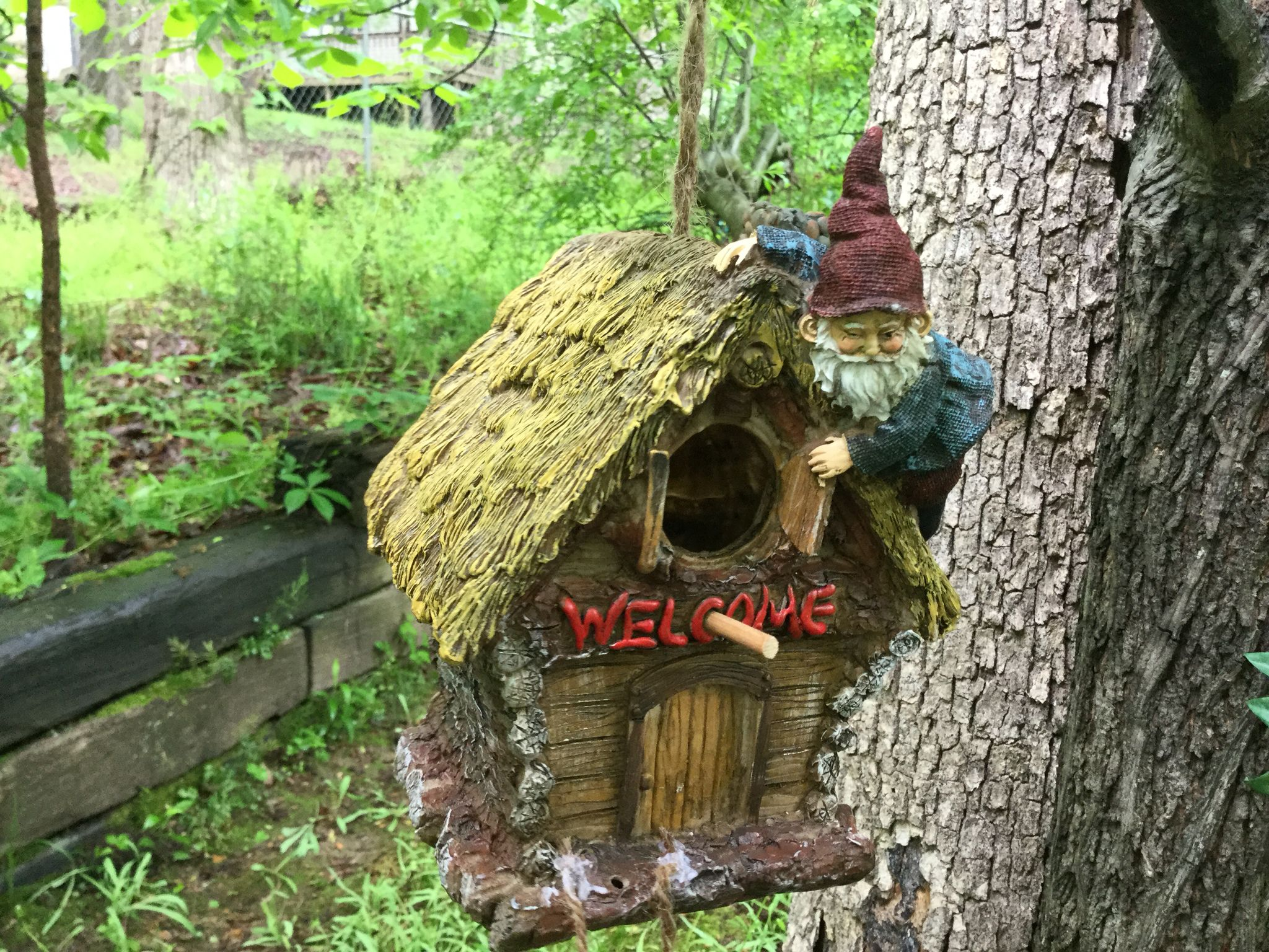 House garden trees  He swings from the trees in my knome garden   fairy gardens by